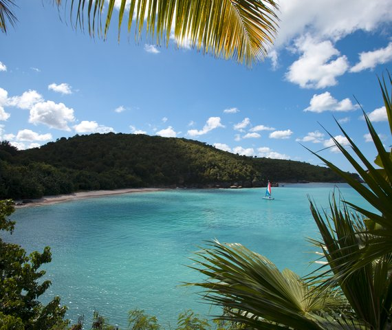 Offerte Elite Blue Waters Resort And Spa