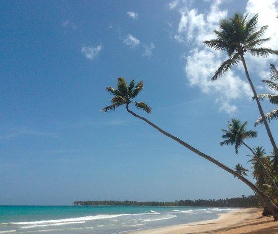 Offerte Gran Bahia Principe El Portillo Beach Resort E Spa